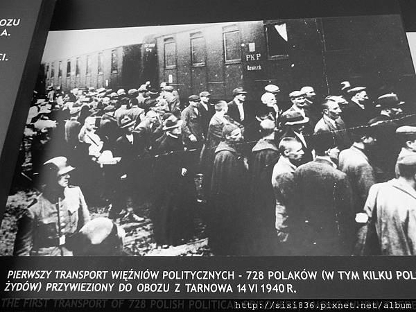 猶太人將被運送至死亡集中營