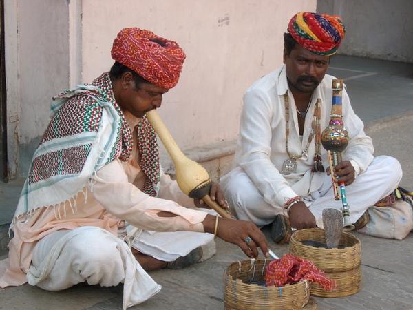 印度吹蛇人