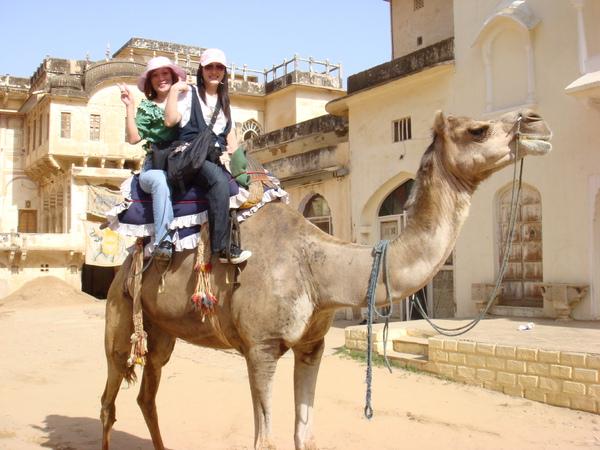 騎駱駝遊街去…