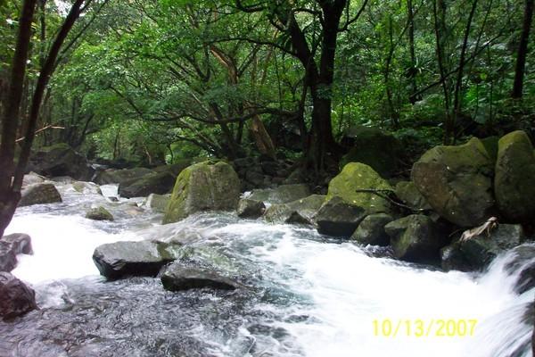 清澈的溪水.JPG