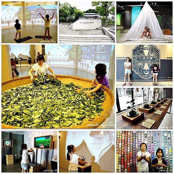 坪林茶葉博物館大鍊茶師─製茶工藝文化特展