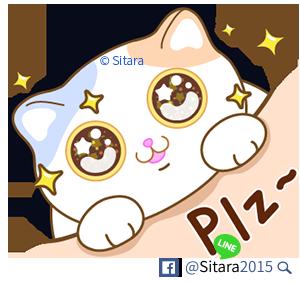 4 Cats From Sitara