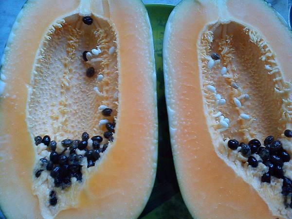 木瓜 木瓜湯 補充母乳 強壯筋骨