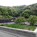 日本四國 Shikoku(五)