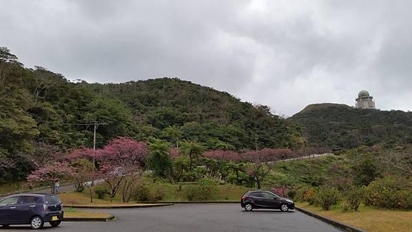 八重岳櫻之森公園20170201_172110.jpg