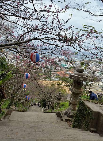 名護城公園20170202_142707.jpg