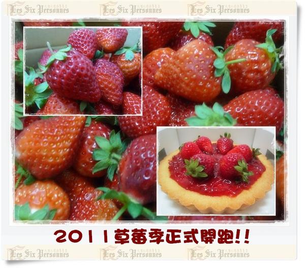 2011草莓季 f.jpg