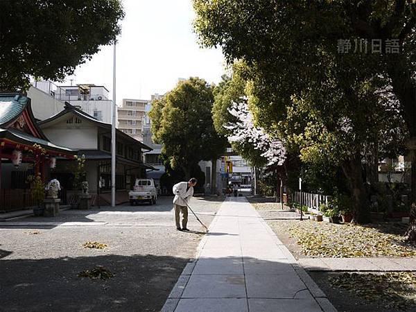 來日本瞧見的第一株櫻花樹,在廟裡。