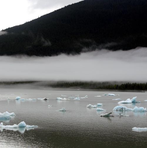 Mendenhall Glacier-1.jpg
