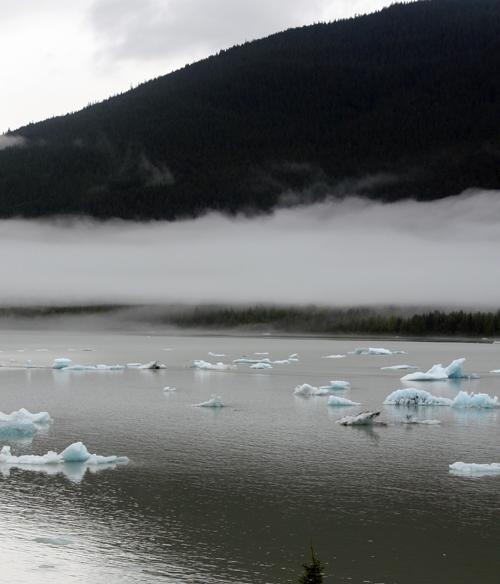 Mendenhall Glacier-6.jpg