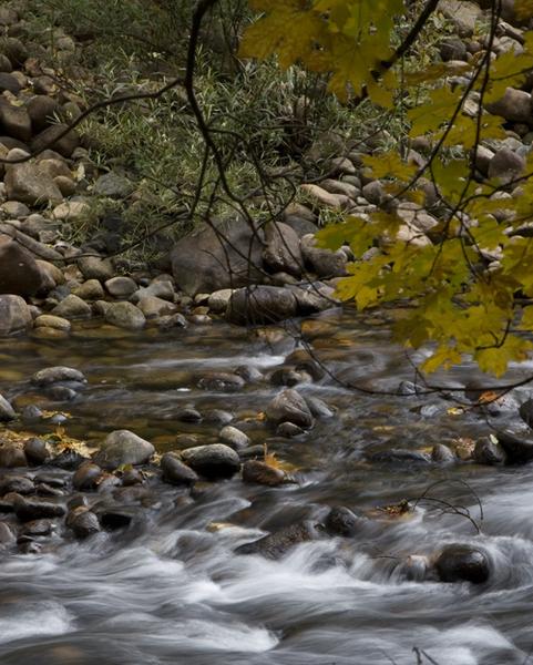 fall-yosemite-4.jpg