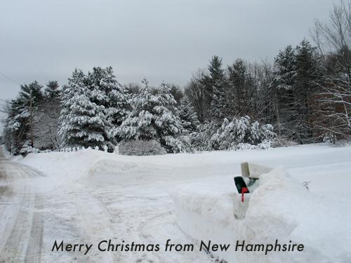 Snow NH-2.jpg