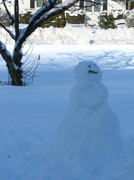 Freddy Snowman-1.jpg