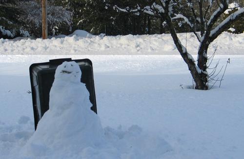 Freddy Snowman-2.jpg