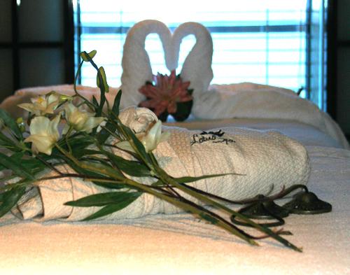 swan towel.jpg
