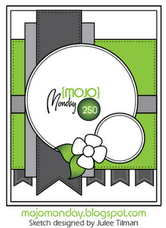 Mojo250Sketch