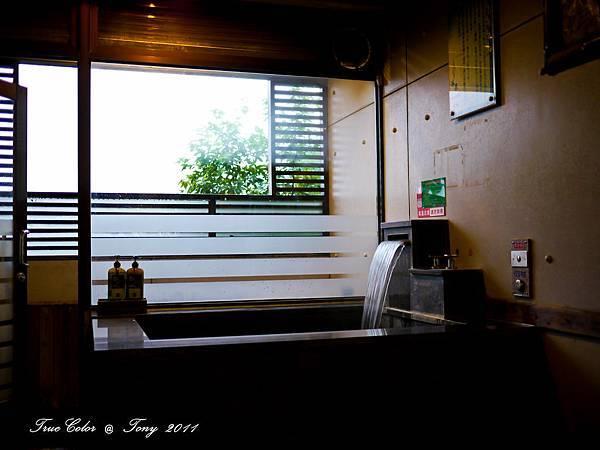 20111110-P1000021.jpg