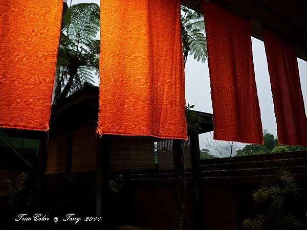 20111110-P1000057.jpg