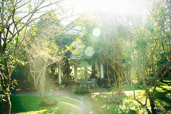 祕密花園-38.jpg