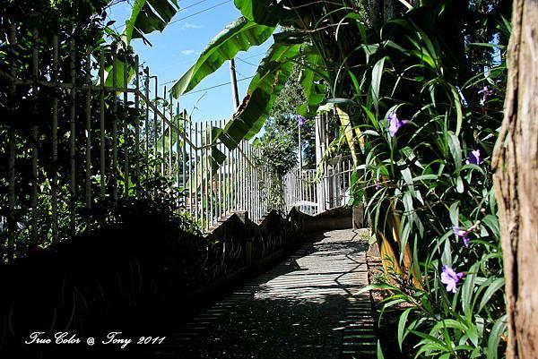祕密花園-58.jpg