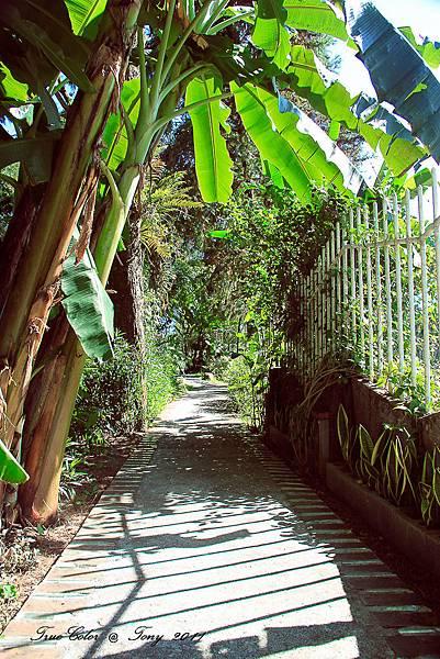 祕密花園-59.jpg