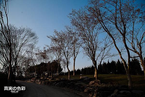 新社古堡-0724.jpg