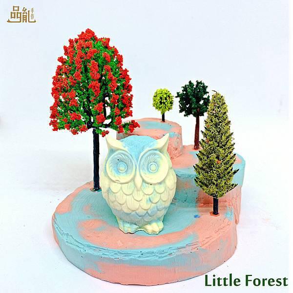 littleforest6.jpg