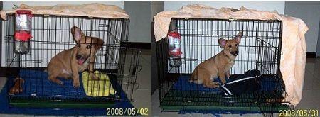 2008-06-01-02.jpg