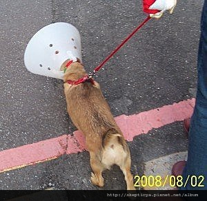 2008-08-03B-04.jpg