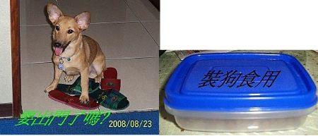 2008-08-25-01.jpg