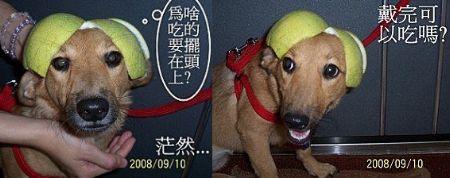 2008-09-14-01.jpg