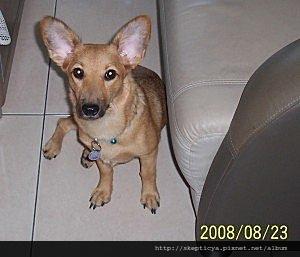 2008-09-21-01.jpg