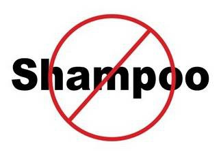 no-shampoo.jpeg