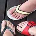 拖鞋三人組