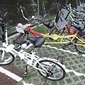 悠閒的腳踏車之行