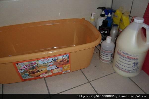 IRIS 澡盆 雪貂.jpg
