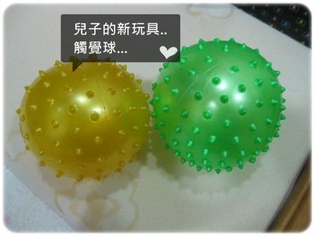 兒子的新玩具觸覺球.JPG