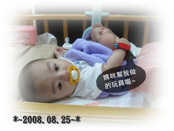2010-08-25-1.JPG