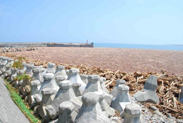 被漂流木堆滿整港的富岡漁港2.jpg
