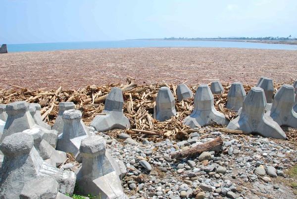 被漂流木堆滿整港的富岡漁港3.jpg