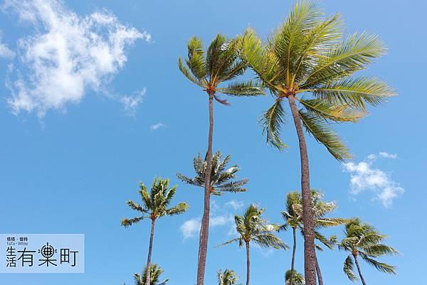 【夏威夷自助旅行】2017夏威夷自助跳島旅行:行前準備懶人包,機票租車住宿美食推薦,10項注意事項分享!