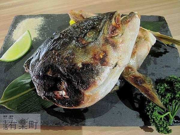【新竹東區美食】松江屋慈雲店:高CP值推薦,平價美味的日式料理!超大魚頭