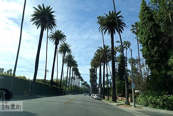 洛杉磯 getty 博物館_DSC03598.JPG