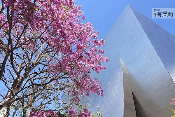 美西洛杉磯旅行景點推薦 華特迪士尼音樂廳 _DSC03350.JPG