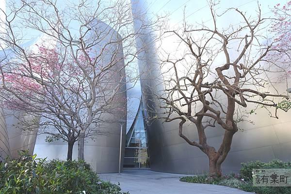 美西洛杉磯旅行景點推薦 華特迪士尼音樂廳 _DSC03341.JPG