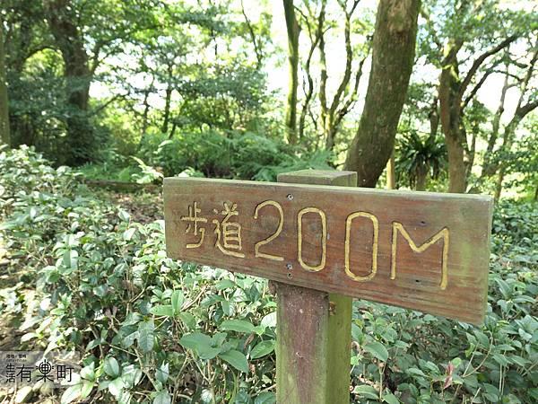 桃園景點 親子旅行 東森山林度假店 住宿推薦_P1100355.JPG