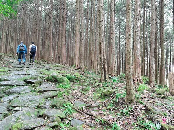 日本三重東紀州懶人包 三天兩夜行程 美食景點溫泉住宿推薦-1110118.jpg