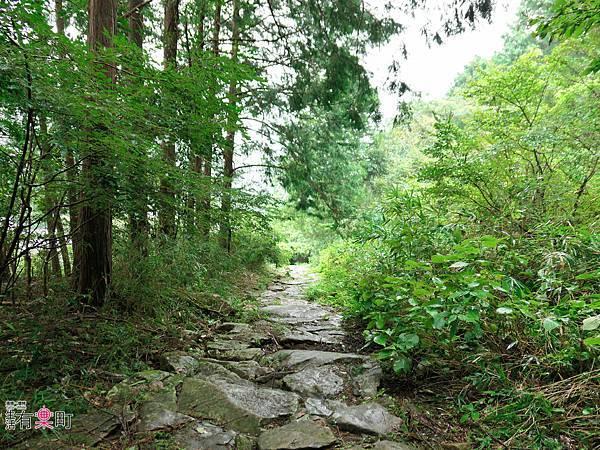 日本三重東紀州懶人包 三天兩夜行程 美食景點溫泉住宿推薦-1110116.jpg