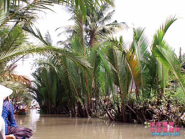 越南一日遊行程推薦,kkday湄公河美托搖船景點-2855.jpg