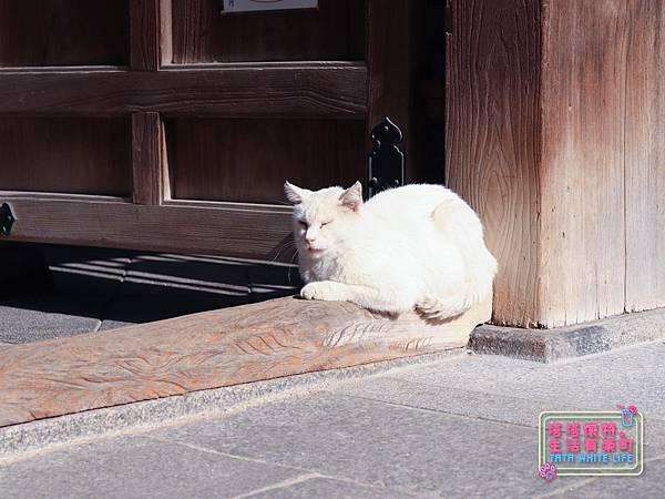 日本九州自助旅行,博多福岡市區景點推薦,櫛田神社參觀、川端商店街-1389.jpg